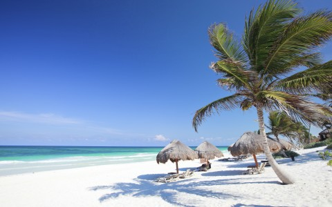 Mayan Riviera Beach Guide