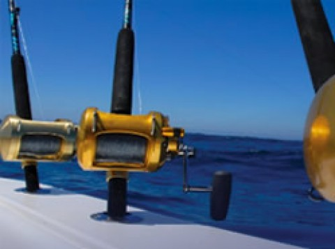 Turks and Caicos Sports Fishing and Charters