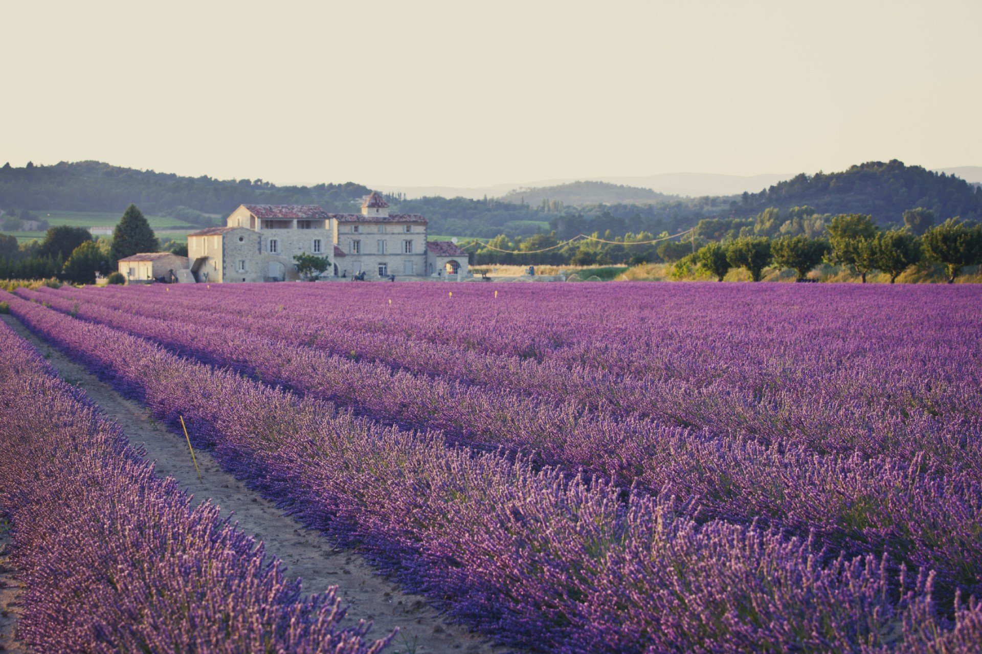 Provence-weather-forecast